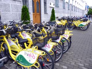 Biciclete in fata Primariei Timsoara (2)