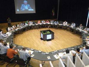 Plen CJT Consiliul Judetean foto Cosmina