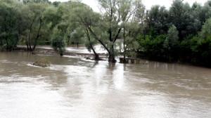 Inundatii pe Dunare