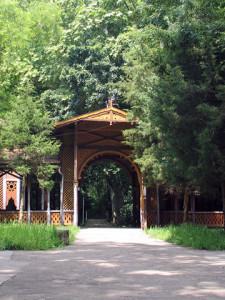 buzias statiune parc