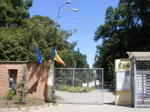 Intrare la Zoo 2