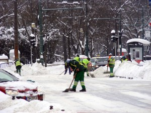 iarna timisoara deszapezire foto daiana (3)