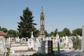 Cimitir Timisoara