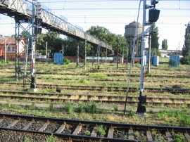 Linii cale ferata si pasarela