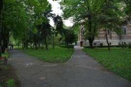 Parcul Catedralei Timisoara
