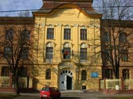 Liceu CD Loga Timisoara