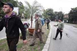 Muncitori Horticultura