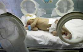 Bebelus incubator