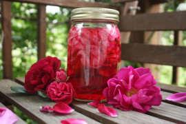 Dulceata trandafiri