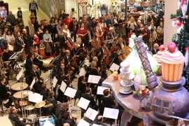 Concert Filarmonica Banatul la Iulius Mall (4)