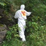 decontaminare
