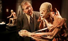 expozitia-the-human-body