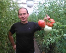 Gratian Mittel cultuvator rosii