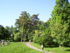 Parcul_Botanic_Timisoara