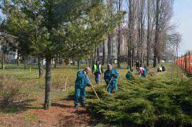 Amenajare Parc Lidia Timisoara