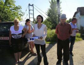 Roxana Iliescu intalnire electorat