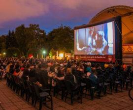 Cinema in aer liber Timisoara 2015 Foto vestic
